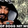 dogg money 2